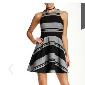 Elizabeth & James Sleeveless Stripe Flared Dress 6